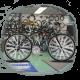 Testovací kola